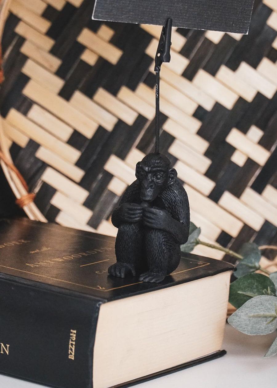 Kaarthouder aap